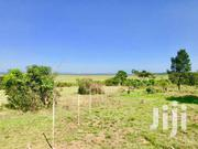 11 Acres Of Avocado Farmland Touching Lake Victoria For Sale . This Be | Land & Plots For Sale for sale in Central Region, Kampala