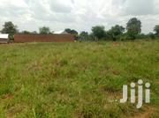 Land For Sale Kasagati-gayaza ,13dce 60/100 | Land & Plots For Sale for sale in Central Region, Kampala