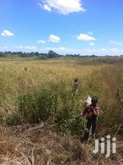 Prime Agricultural Land | Land & Plots For Sale for sale in Eastern Region, Mbale