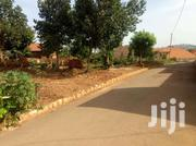 Najjera 50/100its With Ready Land Title | Land & Plots For Sale for sale in Central Region, Kampala