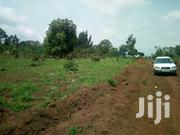 Plots for Sale in Sunlight Estate Busiika at 10.5m | Land & Plots For Sale for sale in Central Region, Wakiso