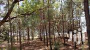 Land For Sale- PECE CUBU -GULU   Land & Plots For Sale for sale in Nothern Region, Gulu