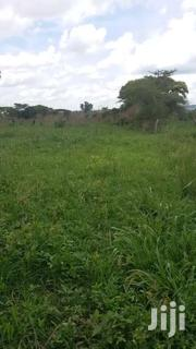Land For Rent In Masindi | Land & Plots For Sale for sale in Western Region, Masindi