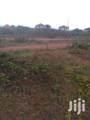 1000 Arcres At 1 Million Each With Ready Titles   Land & Plots For Sale for sale in Nothern Region, Gulu
