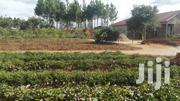 50 M By 18 M Plot In Pece Cubu   Land & Plots For Sale for sale in Nothern Region, Gulu