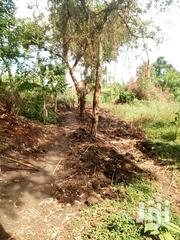 Plot of Land in Masindi Towon Central Division 50x100 | Land & Plots For Sale for sale in Western Region, Masindi