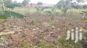 40 M By 30 M Plot In Kabedopong B For Sale   Land & Plots For Sale for sale in Nothern Region, Gulu