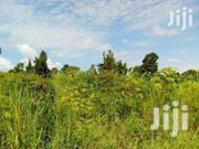 Land 1 Hecter .Good For Both Settlement And Ferming.   Land & Plots For Sale for sale in Nothern Region, Gulu