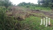 4 Acres Available for Immediate Sale in Layibi   Land & Plots For Sale for sale in Nothern Region, Gulu